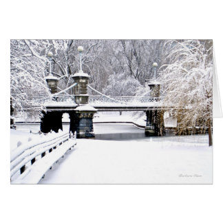 Sounds of Silence: Boston Public Garden-Greeting Card