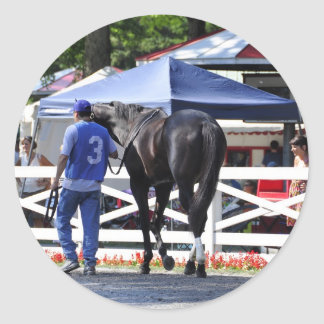 """Souper Speedy"" The James Marvin Stakes Classic Round Sticker"