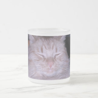 Sour Puss/Orange Tabby Kitten Frosted Glass Coffee Mug