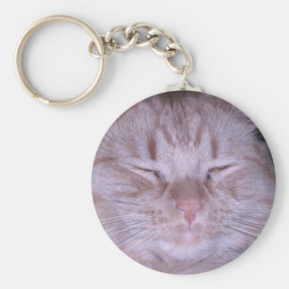 Sour Puss/Orange Tabby Kitten Keychain