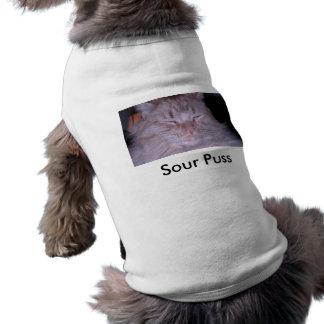 Sour Puss/Orange Tabby Kitten Shirt