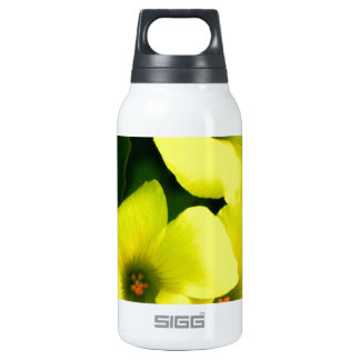 sour sobs thermos water bottle