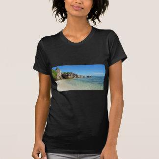 source d'argent T-Shirt