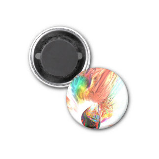Source of all Rainbows Magnet