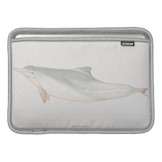 Sousa chinensis, delfín Indo-Pacífico del Humpback Funda MacBook