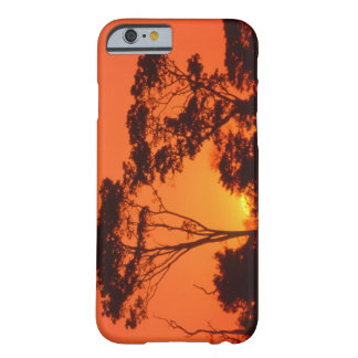 South Africa.  African sunset. Barely There iPhone 6 Case