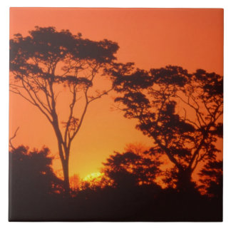 South Africa.  African sunset. Ceramic Tile