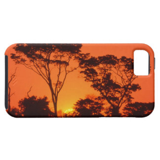 South Africa.  African sunset. iPhone SE/5/5s Case