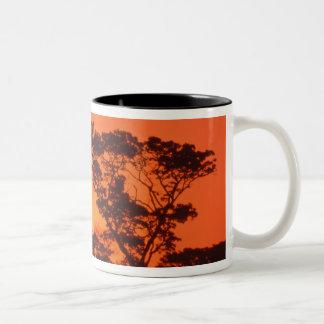 South Africa.  African sunset. Coffee Mug