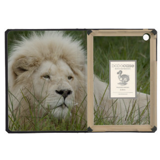 South Africa, East London, Inkwenkwezi Private iPad Mini Covers