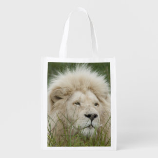 South Africa, East London, Inkwenkwezi Private Grocery Bag