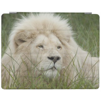 South Africa, East London, Inkwenkwezi Private iPad Cover
