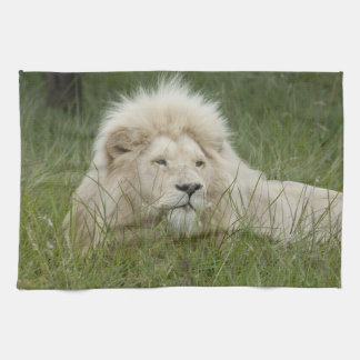South Africa, East London, Inkwenkwezi Private Towels