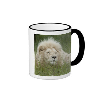 South Africa, East London, Inkwenkwezi Private Ringer Coffee Mug