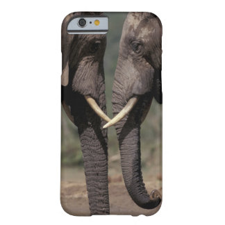 South Africa, Kalahari-Gemsbok NP, Gemsbok at Barely There iPhone 6 Case