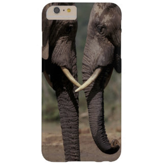 South Africa, Kalahari-Gemsbok NP, Gemsbok at Barely There iPhone 6 Plus Case