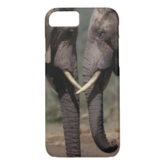 South Africa, Kalahari-Gemsbok NP, Gemsbok at iPhone 8/7 Case