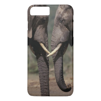 South Africa, Kalahari-Gemsbok NP, Gemsbok at iPhone 8 Plus/7 Plus Case