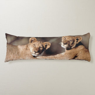 South Africa, lion cubs Body Pillow