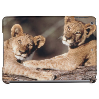 South Africa, lion cubs iPad Air Covers