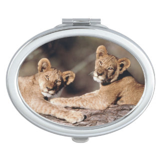 South Africa, lion cubs Mirror For Makeup