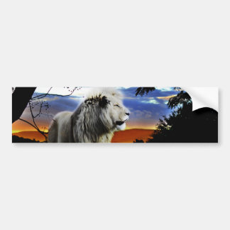 South Africa Lion in the Jungle Bumper Sticker