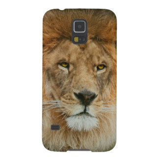 South Africa Majestic Lion Close up Galaxy S5 Cover