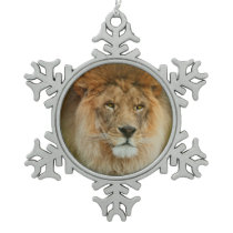 South Africa Majestic Lion Close up Snowflake Pewter Christmas Ornament