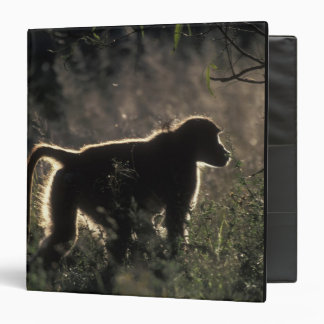South Africa, Pilanesburg Game Reserve, Chacma Vinyl Binder