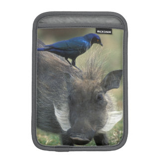 South Africa, Pilanesburg GR, Warthog Sleeve For iPad Mini
