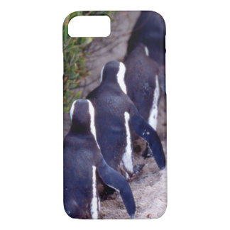 South Africa, Simons Town. Follow the leader. iPhone 8/7 Case