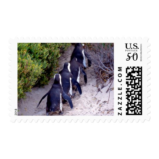 South Africa, Simons Town. Follow the leader. Postage