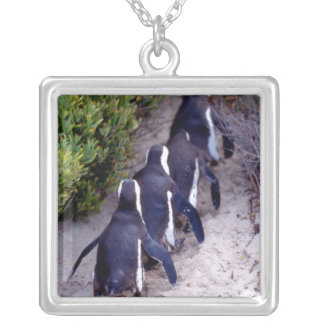 South Africa, Simons Town. Follow the leader. Silver Plated Necklace