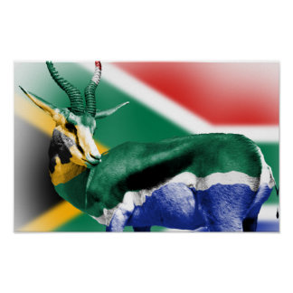 South Africa Springbock Flag Poster