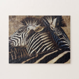 South Africa, View of Zebra (Equus Burchellii) Jigsaw Puzzles