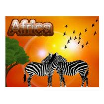 South Africa Vintage Zebra Travel Postcard