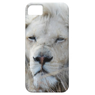 South Africa White Lion resting iPhone SE/5/5s Case