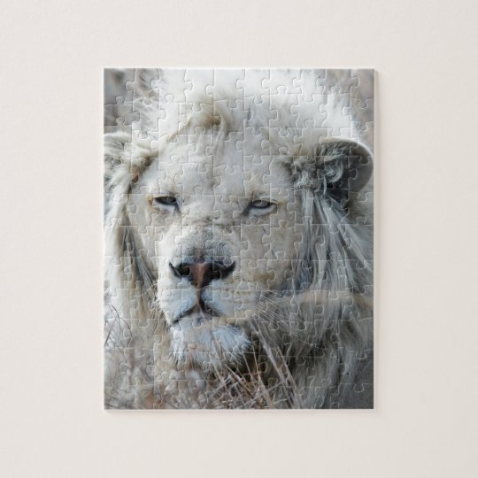 South Africa White Lion resting Jigsaw Puzzle