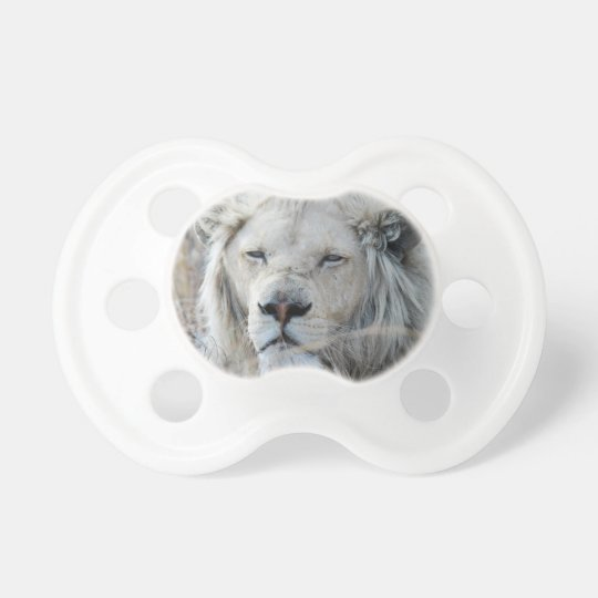 South Africa White Lion resting Pacifier