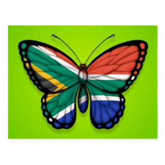 South African Butterfly Flag on Green Postcard