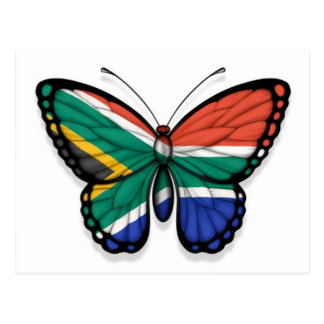 South African Butterfly Flag Postcard