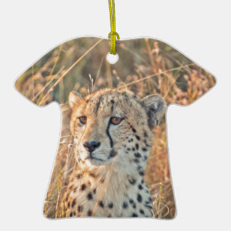 South African Cheetah searches for food Ceramic T-Shirt Decoration