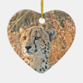South African Cheetah searches for food Ceramic Heart Decoration