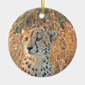 South African Cheetah searches for food Round Ceramic Decoration