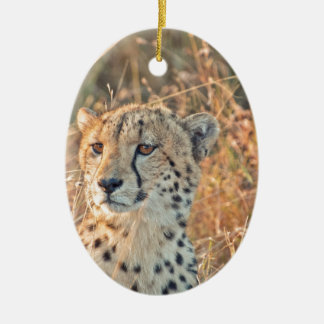 South African Cheetah searches for food Ceramic Oval Decoration