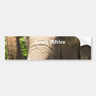 South African Elephant Bumper Stickers