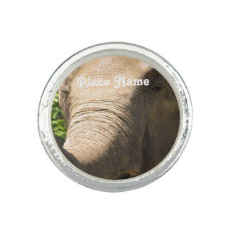 South African Elephant Rings