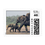 South African Elephants (small) Postage