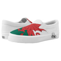 South African Flag Printed Shoes