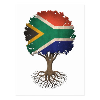 South African Flag Tree of Life Customizable Postcard